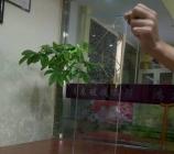 百叶玻璃产品